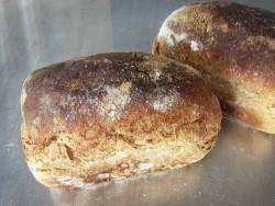 Volkoren Bus Brood